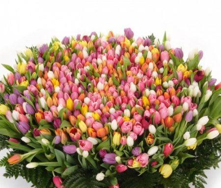 Bouquet 1001 tulips!