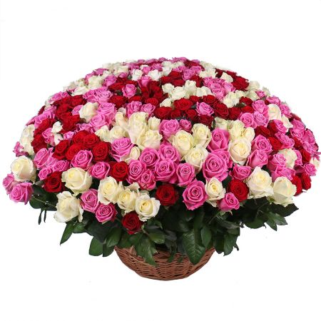 Bouquet Mix of 301 rose