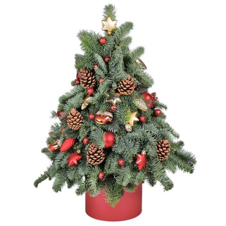 Product Christmas tree in a box