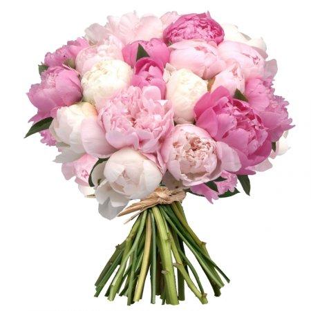 Bouquet Mixed peonies