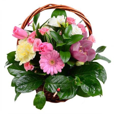 Bouquet Surprise for beloved