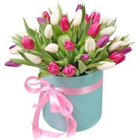 Bouquet Tulips in a box